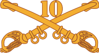 10th Cavalry Decal