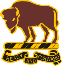 10th Cavalry Regiment DUI - Left Decal