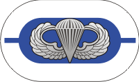1st Battalion 325th Airborne Infantry Regiment Oval with Jump Wings Decal
