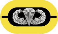 1st Battalion 509th Parachute Infantry Regiment Oval Decal