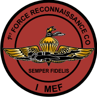 1st Force Recon Company, I MEF Marine Expeditionary Force Decal