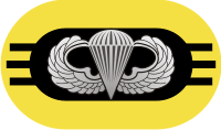 3rd Battalion 509th Parachute Infantry Regiment Oval Decal