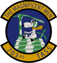 703rd Tactical Air Support Squadron Decal