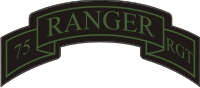 75th Ranger Regiment Scroll (Subdued) Decal