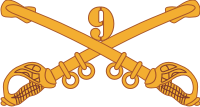 9th Cavalry Decal