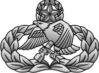 Air Force Aircraft Maintenance & Munitions Badge – Master Decal