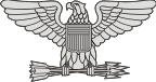 AF Colonel (COL) - Left Decal