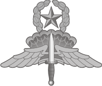 Air Force HALO Master Decal