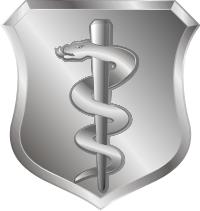 USAF Medical Corps Basic Badge Decal