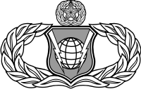 AF Command and Control Badge Master Decal