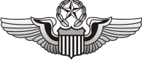 Air Force Command Pilot Wings Decal