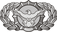 AF Security Police Decal