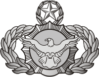 AF Security Police Chief Decal