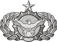 AF Security Police Senior Decal