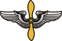 Air Force Wings & Prop Decal