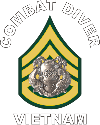 Army E-6 Combat Diver Decal