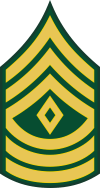 Army E-8 1SG First Sergeant Decal