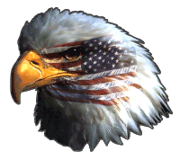 Masked Eagle (Reversed) Decal