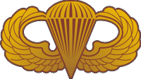 Jump Wings (Gold) Decal