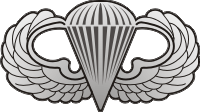Jump Wings (Silver) Decal