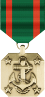 Navy Achievement Medal Decal