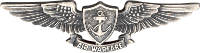 Navy Enlisted Aviation Warfare Decal