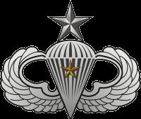 Senior Jump Wings w/1 Combat Star Decal