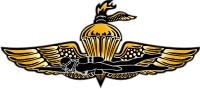 USMC Force Recon Wings Decal