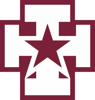 139th Medical Brigade, Army Reserve Decal