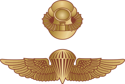 USMC Recon Combo Jump Wings/Combat Diver Decal